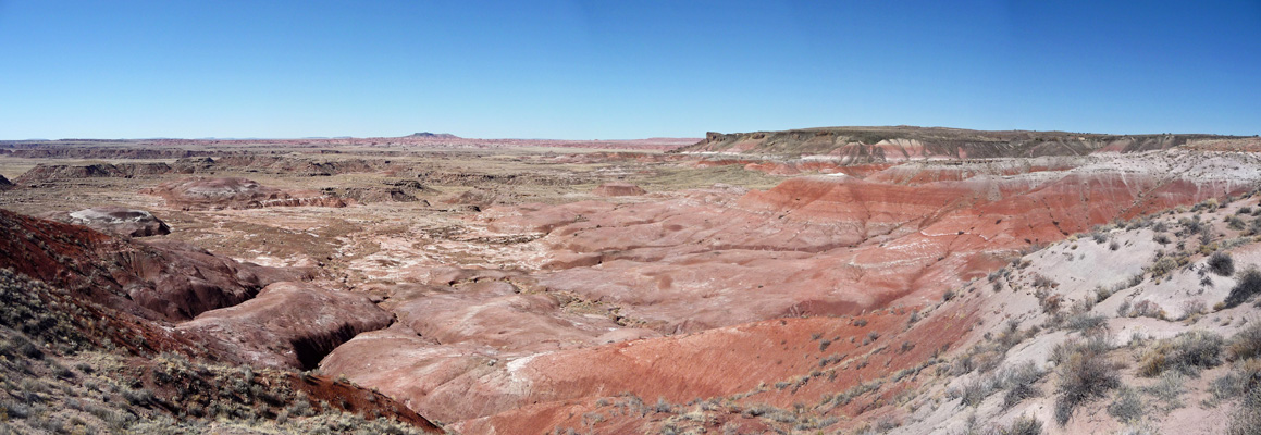 Lacey Point viewpoint Petrified Forest NP