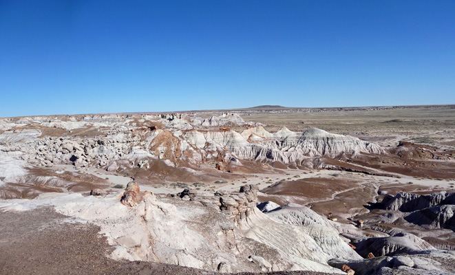 Blue Mesa Petrified Forest NP