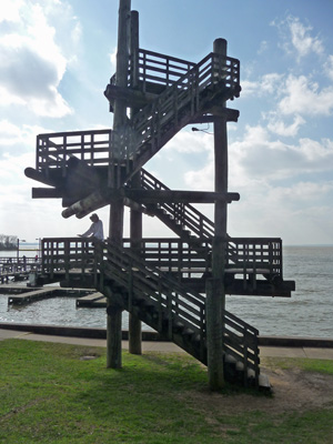 Observation Tower Lake Livingston SP