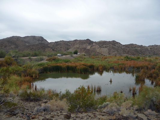 Pond at Mittry Lake NWR