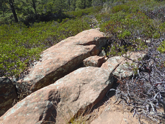 rocks and manzanita