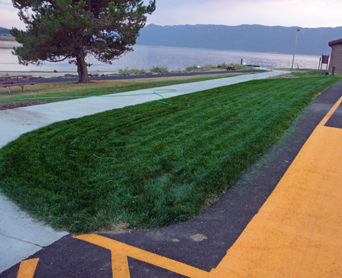 new sod at Sugarloaf boat ramp parking lot