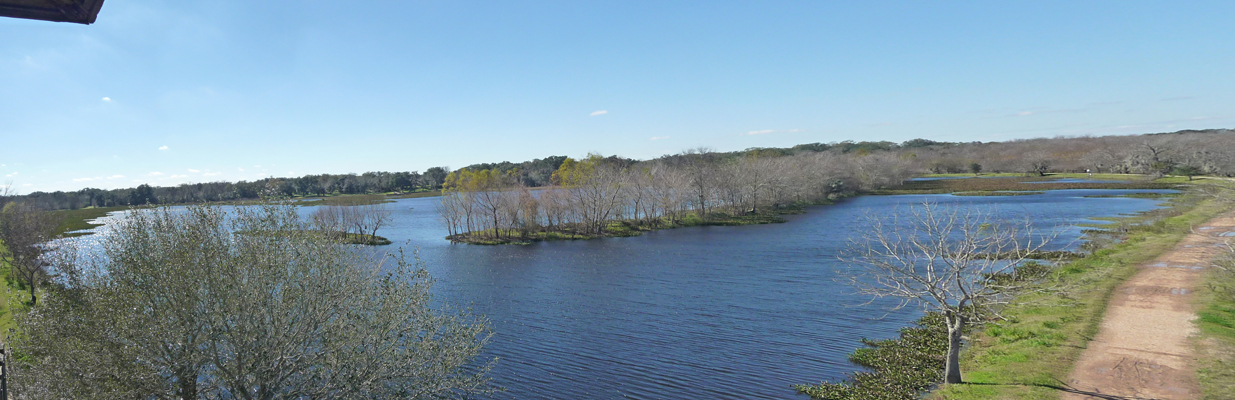 40-acre Lake Brazos Bend SP