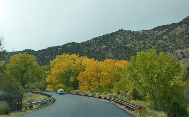 Fall color Low Rd Taos