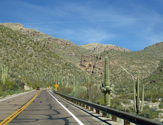 Catalina Mountain Hwy