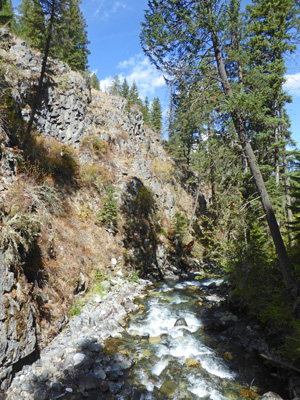 Down West Fork Wallowa River