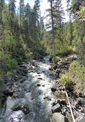Up West Fork Wallowa River