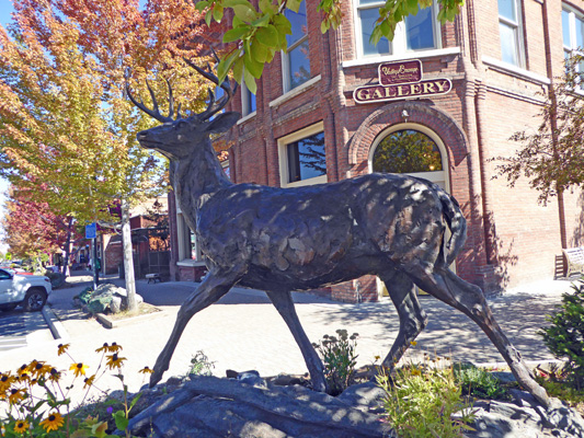 Bronze of white tailed deer